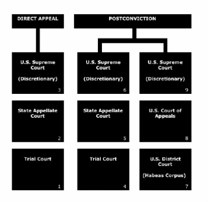 sentencing appeals and the death penalty Family appeals against death penalty over for the death penalty to be abolished in exhausted all forms of appeal against the death sentence.